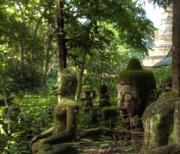 泰国清迈悟蒙寺